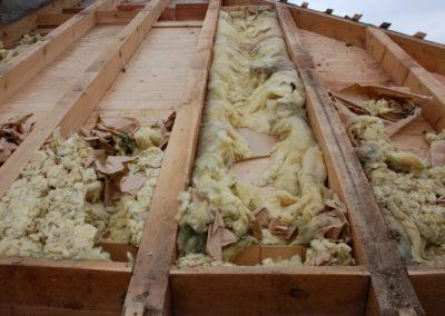 Rénovez toit dégâts fouines